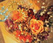 image/nono-note-2006-03-29T07:49:29-1.jpg