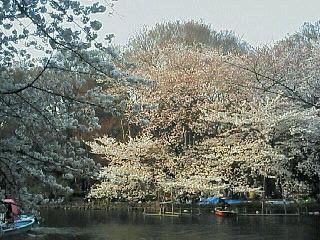 image/nono-note-2006-04-01T16:50:18-1.jpg
