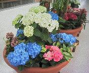image/nono-note-2006-05-17T21:49:01-1.jpg